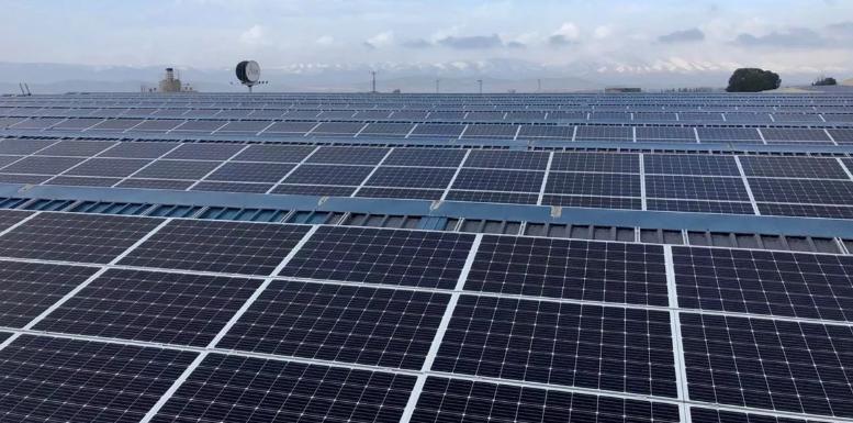 Capenergie 4 firma una alianza con Prosolia para desarrollar proyectos solares en España