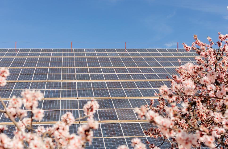La solar fotovoltaica lleva cinco días seguidos batiendo récords