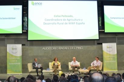 Ence comienza la construcción en Huelva de la nueva planta de biomasa de 40 megavatios