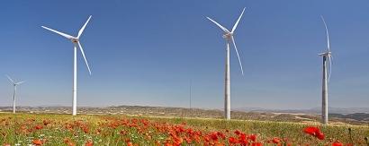 Telefónica elige la electricidad renovable de Acciona