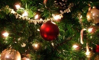 Las luces del árbol y las de los demás adornos navideños le costarán este año 20 euros a cada hogar