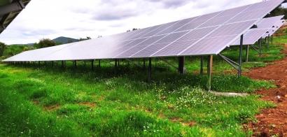 Ibéricos, de bellota... y con una instalación solar para autoconsumo