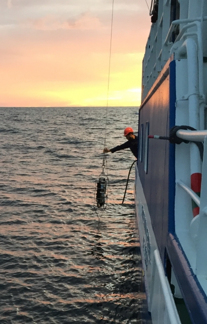 La temperatura media de la columna de agua en el litoral vasco ha aumentado casi medio grado en solo 30 años