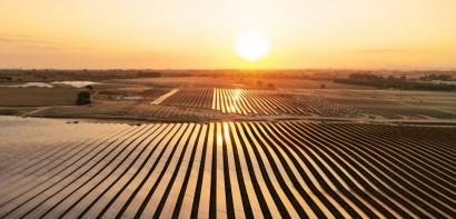 La consultora Wood Mackenzie rebaja las expectativas de crecimiento del sector solar fotovoltaico