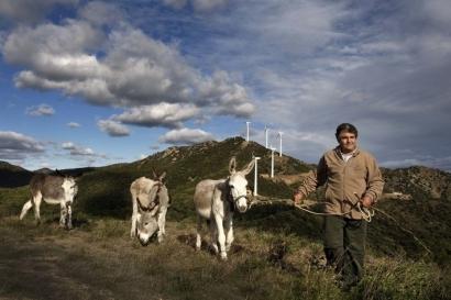 El 70% de los habitantes de municipios con parques eólicos de Cataluña, satisfecho con su instalación