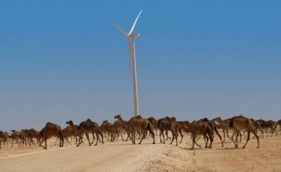 Elecnor se adjudica la construcción de su segundo parque eólico en Mauritania