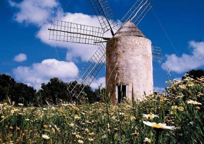 Formentera quiere cubrir con placas fotovoltaicas diez parkings de la isla