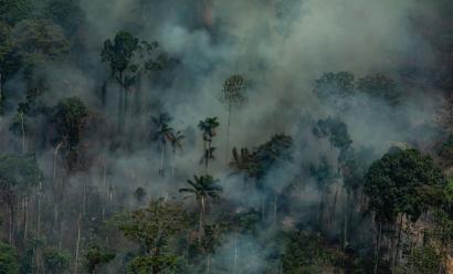 """""""La buena voluntad no vale de nada, lo que se necesita es el compromiso de alcanzar emisiones cero para 2050"""""""