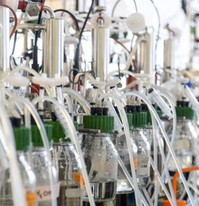 Industrial Consortium Receives EU Funding for Biofuel Demonstration