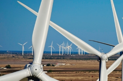 """Andalucía califica de """"lamentable"""" el resultado de la última subasta renovable"""