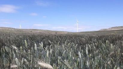 GES finaliza la construcción y montaje de mas de 300 MW eólicos para CIP en Zaragoza