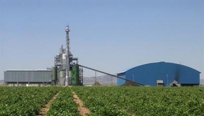 Ence adapta la planta de Enemansa para quemar biomasa forestal, además de orujillo