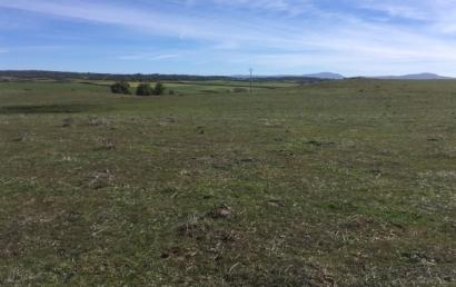 FRV ya cuenta con la financiación necesaria para poner en marcha en Trujillo el campo fotovoltaico de La Solanilla