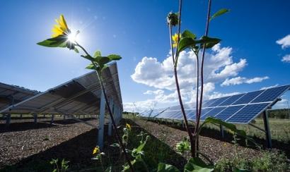 Tribal Utility-Scale Solar Initiatives Emerge Across Southwest US