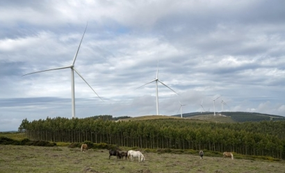 España 2020, el país con 110.000 megavatios de potencia eléctrica y un máximo de demanda de 40.000