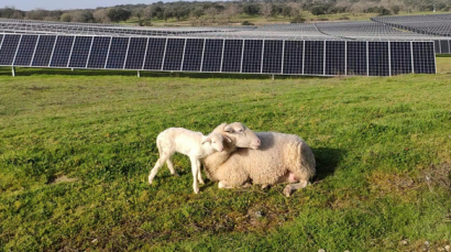 El ministro luso de Medio Ambiente inaugurará el 17 de mayo las cuatro plantas fotovoltaicas de Solaria en Portugal