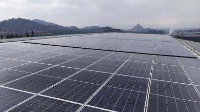 La multinacional murciana Ramón Sabater apuesta por el autoconsumo solar