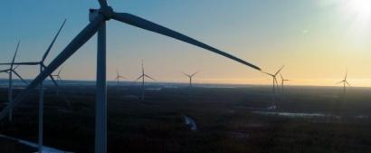 Philips, Heineken, Nouryon y Signify alimentarán con vientos de Finlandia sus procesos industriales