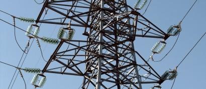 La Fiscalía se querella contra Endesa por la muerte de centenares de aves en sus tendidos eléctricos