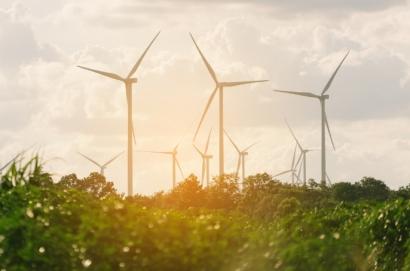 El fabricante danés de ventanas Velux y Schneider Electric se alían para la compra de energías renovables