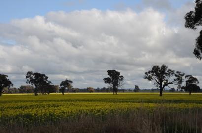 El Gobierno del estado australiano de Victoria respalda un megaparque fotovoltaico de 85 megavatios promovido por FRV
