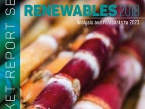 La Agencia Internacional de la Energía pronostica un importante crecimiento de la bioenergía