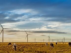 Acciona, a punto de instalar el megavatio 600 en Australia