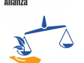 Las demandas contra España por los recortes a las renovables podrían llegar a su fin con esta campaña