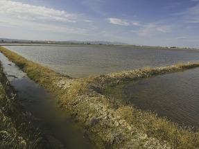 El Parque Natural del Delta del Ebro emplea energía solar para reducir la salinidad de sus aguas