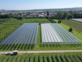 BayWa r.e. y Fraunhofer ISE desarrollan soluciones agro-fotovoltaicas para el sector frutícola