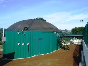 Biogás, el gran olvidado de la transición energética