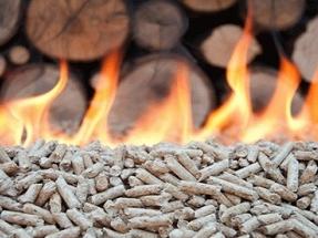 """""""La biomasa representa más del 80% de toda la energía renovable térmica en la Unión Europea"""""""