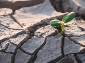 BBVA le concede a Iberdrola un préstamo verde de 400 millones de dólares