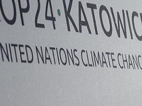 """En la Cumbre del Clima de Katowice """"los gobiernos han defraudado al mundo otra vez"""""""