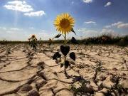 """Ecologistas en Acción considera que Bangkok deja sin resolver """"importantes cuestiones climáticas"""""""