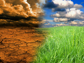 Greenpeace, EQUO y Fundación Renovables coinciden: falta ambición en la Ley de Cambio Climático