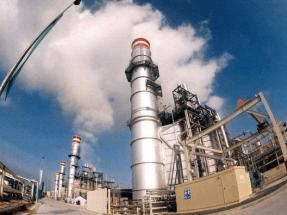 Una decena de organizaciones exigen al Gobierno el cierre progresivo de las centrales eléctricas no renovables