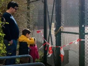 Greenpeace revisa la crisis de 2008 para alertar sobre las amenazas que se ciernen sobre la España del Covid-19