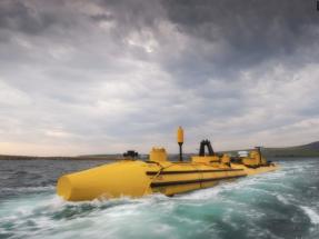Europa estudia el impacto acústico de las renovables marinas en hábitats y especies