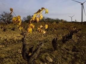 La administración catalana rechaza tres de los cuatro proyectos eólicos presentados a evaluación