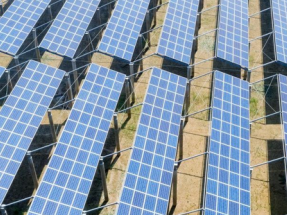 Para cumplir el PNIEC habría que instalar una capacidad solar equivalente la superficie de Madrid