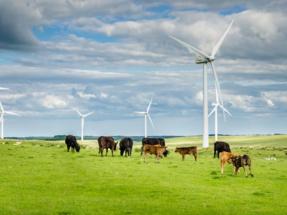 España vuelve a situarse entre los países más atractivos del mundo para invertir en renovables