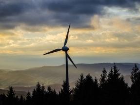 La Fundación Renovables critica con dureza el informe de la Comisión de Expertos en Transición Energética