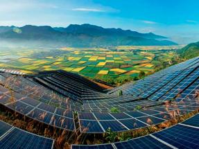 Irena trabajará con China para ayudarle a lograr la neutralidad climática antes de 2060