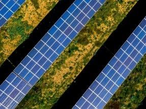 FieldFare Renewables gana 100 MW fotovoltaicos en la primera subasta de energía renovable de Argentina