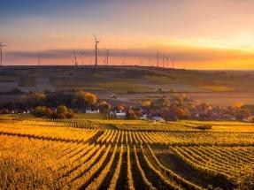 """Forestalia anuncia que comenzará a instalar parques eólicos """"en este semestre"""""""