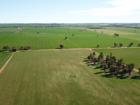 FRV cierra en Australia la financiación de su parque solar Sebastopol
