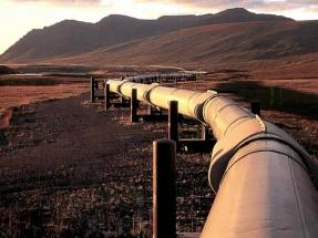 """El gas se postula como alternativa para el """"transporte de dificil electrificación"""""""