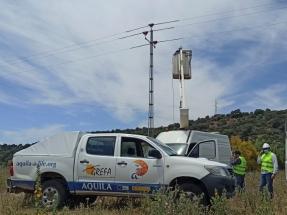 Eliminado el punto negro de electrocución de aves más letal de la provincia de Jaén
