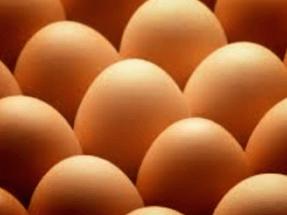 Huevos Guillén llega a la energía verde de la mano de Alcanzia